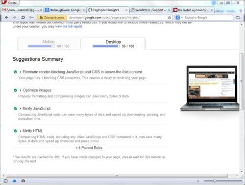 Google PageSpeed Insights po optymalizacją