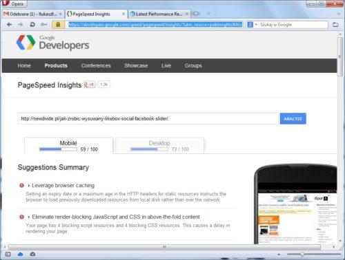 Google PageSpeed Insights przed optymalizacją